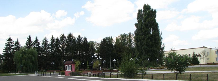 Школа – в центрі села